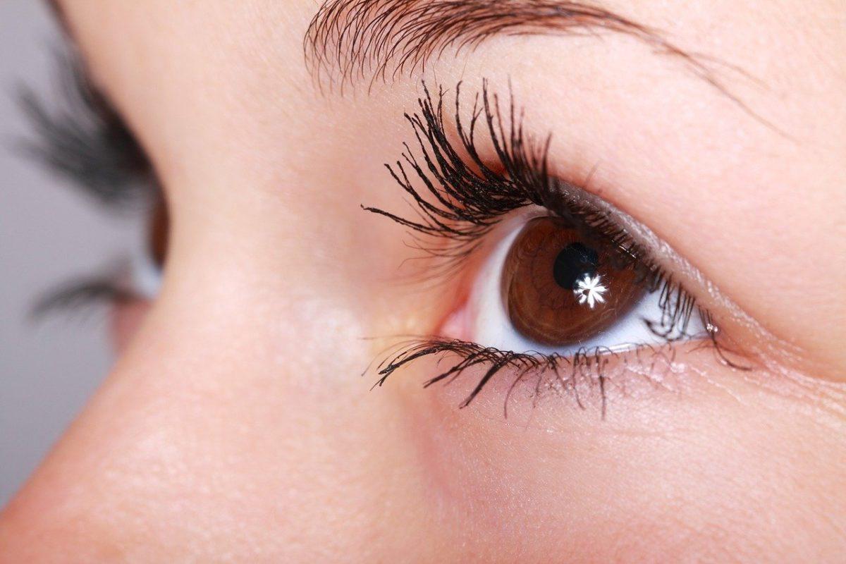 Oczy to charakterystyczny organ. To dokładnie dzięki nim spostrzegamy.
